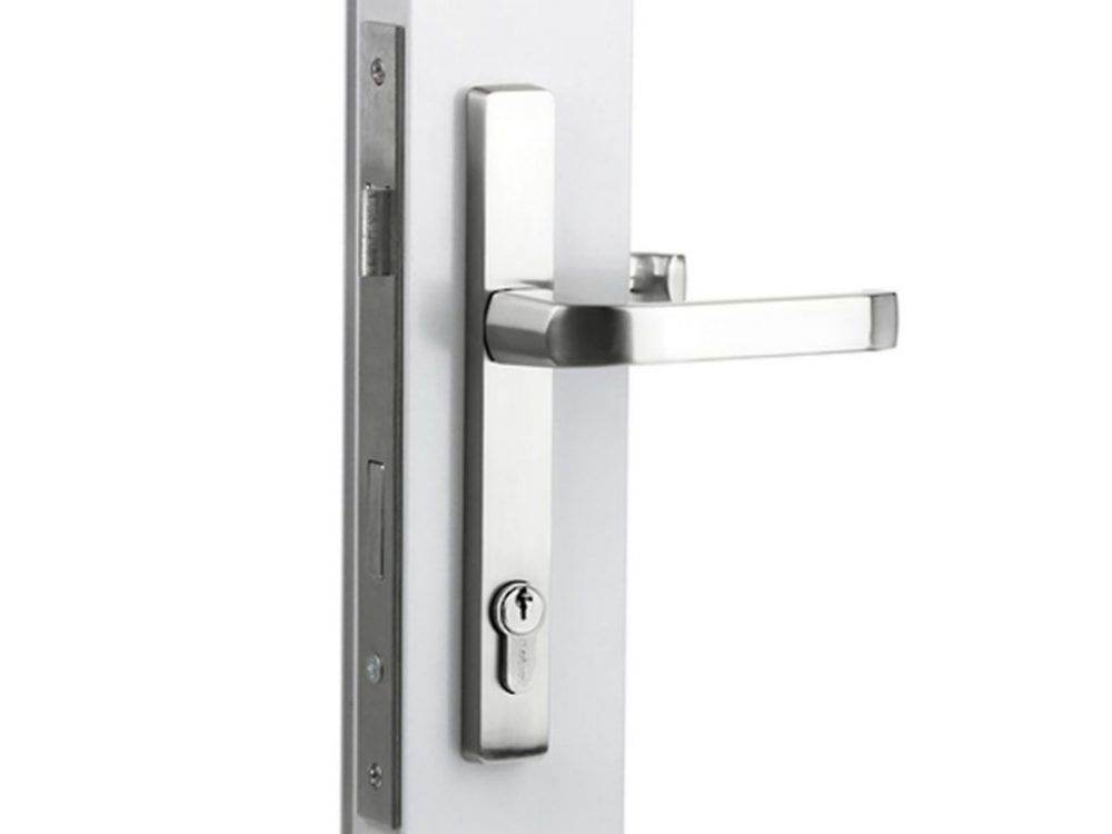 Sylvan Leo Lever Handles On 202mm Long Plate with Iseo 741 30mm lock
