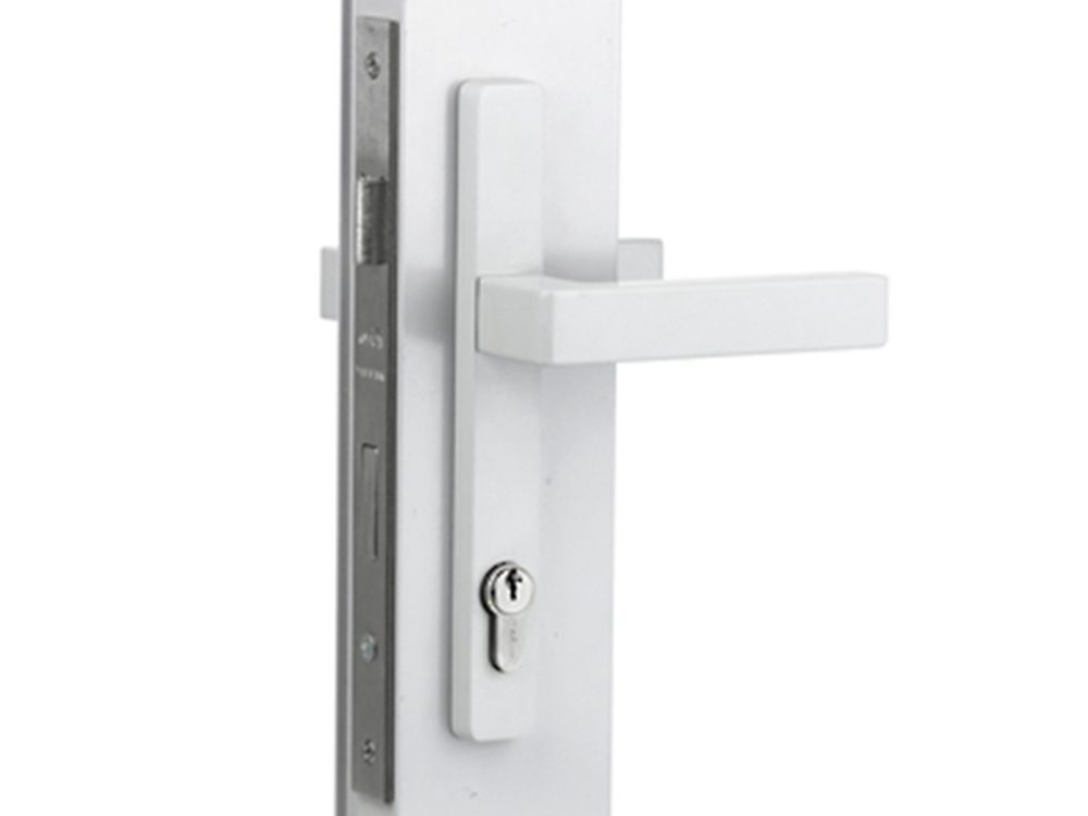 Sylvan Virgo Lever Handles On 202mm Long Plate with Iseo 741 30mm lock